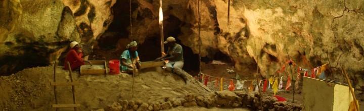 The archaeology of defaunation on Zanzibar
